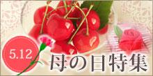 清川屋母の日特集