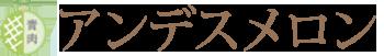 清川屋のアンデスメロン
