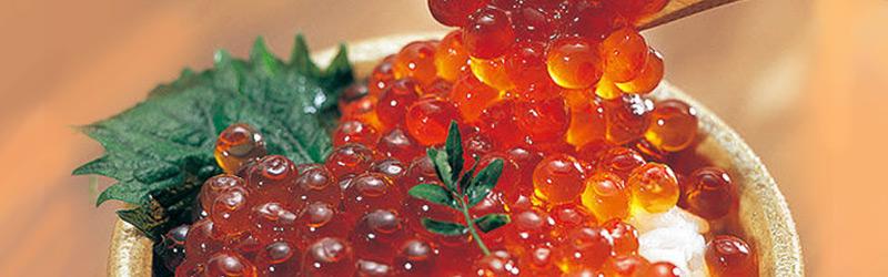 魚介類 加工品