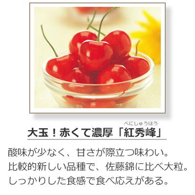 さくらんぼの品種-紅秀峰