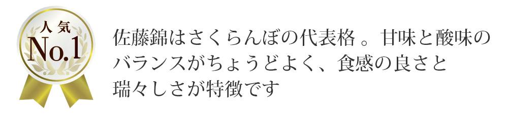 佐藤錦LP