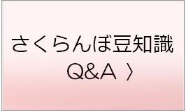 さくらんぼ豆知識、Q&A