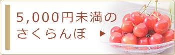 5,000円未満のさくらんぼ