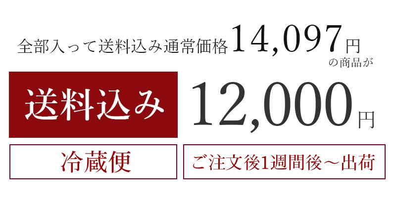 送料込み12,000円セット