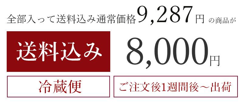 送料込み8,000円セット