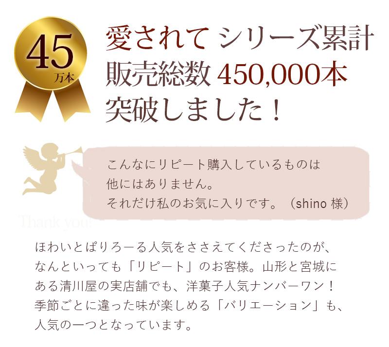 シリーズ累計45万本突破しました!