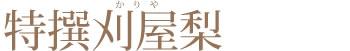 白山村産だだちゃ豆(本豆)