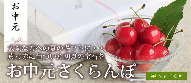 ピックアップアイテム-お中元さくらんぼ