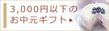 3,000円未満のお中元・サマーギフト
