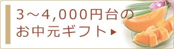 3〜4,000円台のお中元・サマーギフト