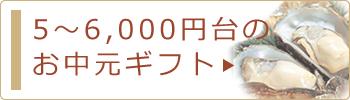 5〜6,000円台のお中元・サマーギフト
