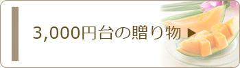 3,000円台のお中元・サマーギフト