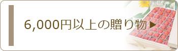 6000円以上のお中元・サマーギフト