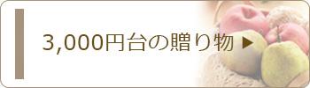 3,000円台のお歳暮